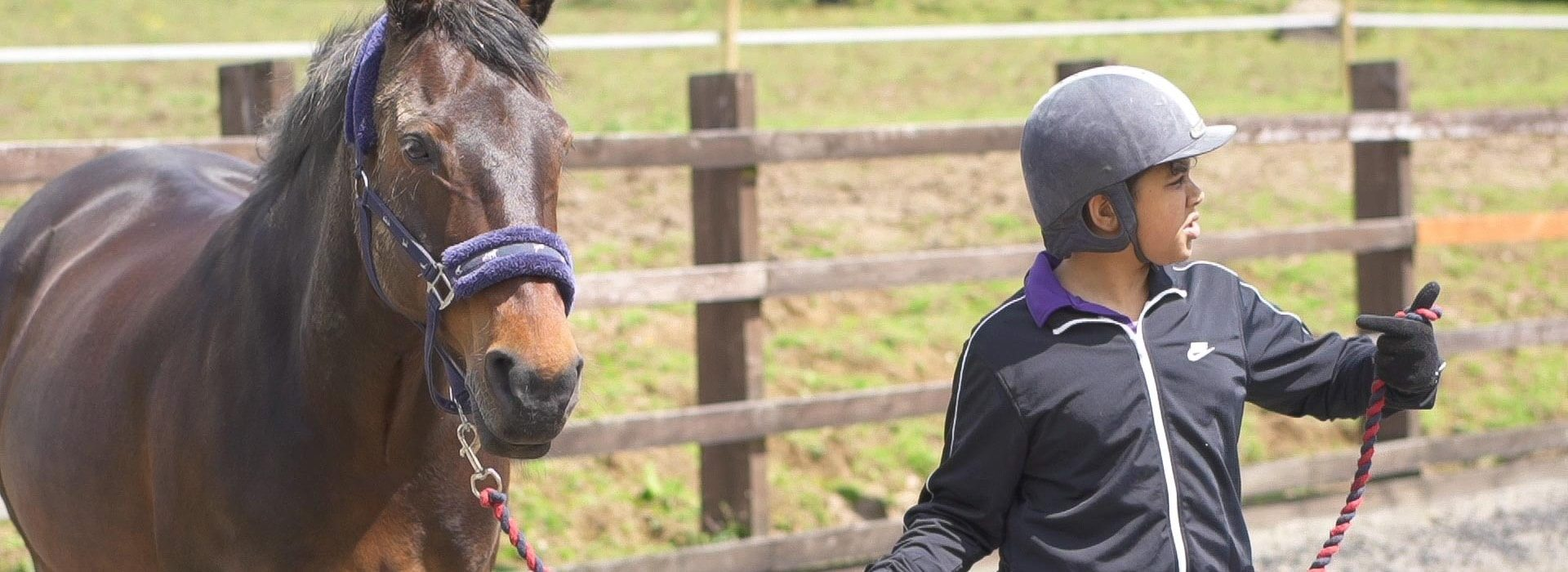 Strength and Learning Through Horses